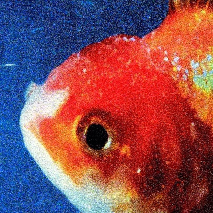 Album Title: Big Fish Theory by: Vince Staples